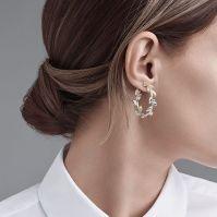 Earrings That Hang Behind The Ear Guide To Earring ...