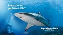 Aquarium De Paris - Cinaqua Attractions In Chaillot
