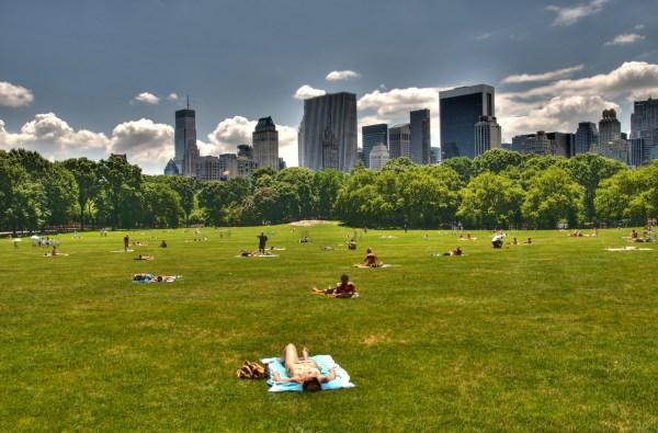 Wonderful In Central Park Season