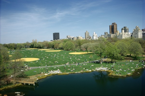 Picnic Spots In Central Park Outdoor Meal