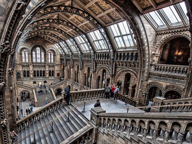 Natural History Museum  Museums in Brompton London