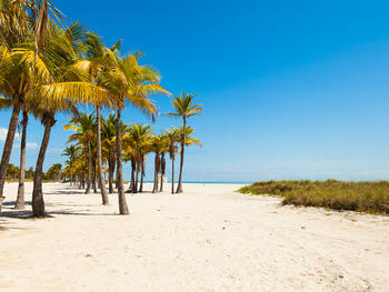 Get a breath of fresh air in tranquil Key Biscayne