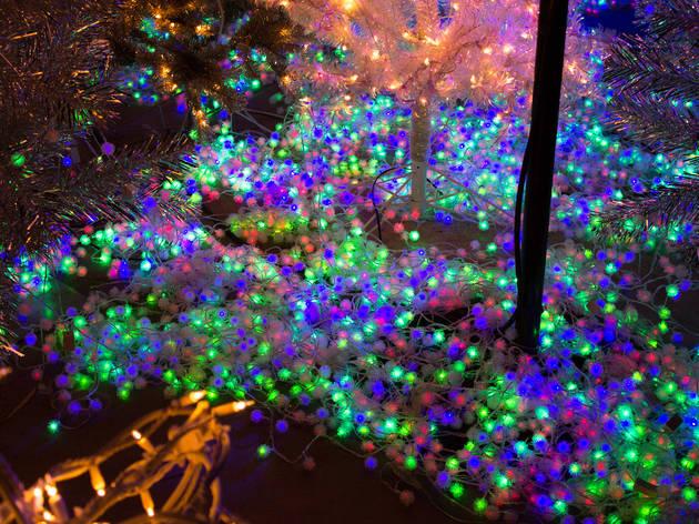 Christmas Lights La Zoo