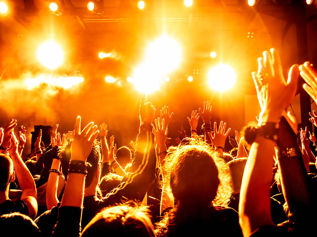 the best concerts in