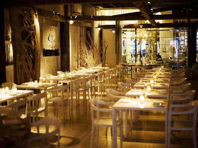 Top 5 star restaurants in NYC ranked and reviewed by our