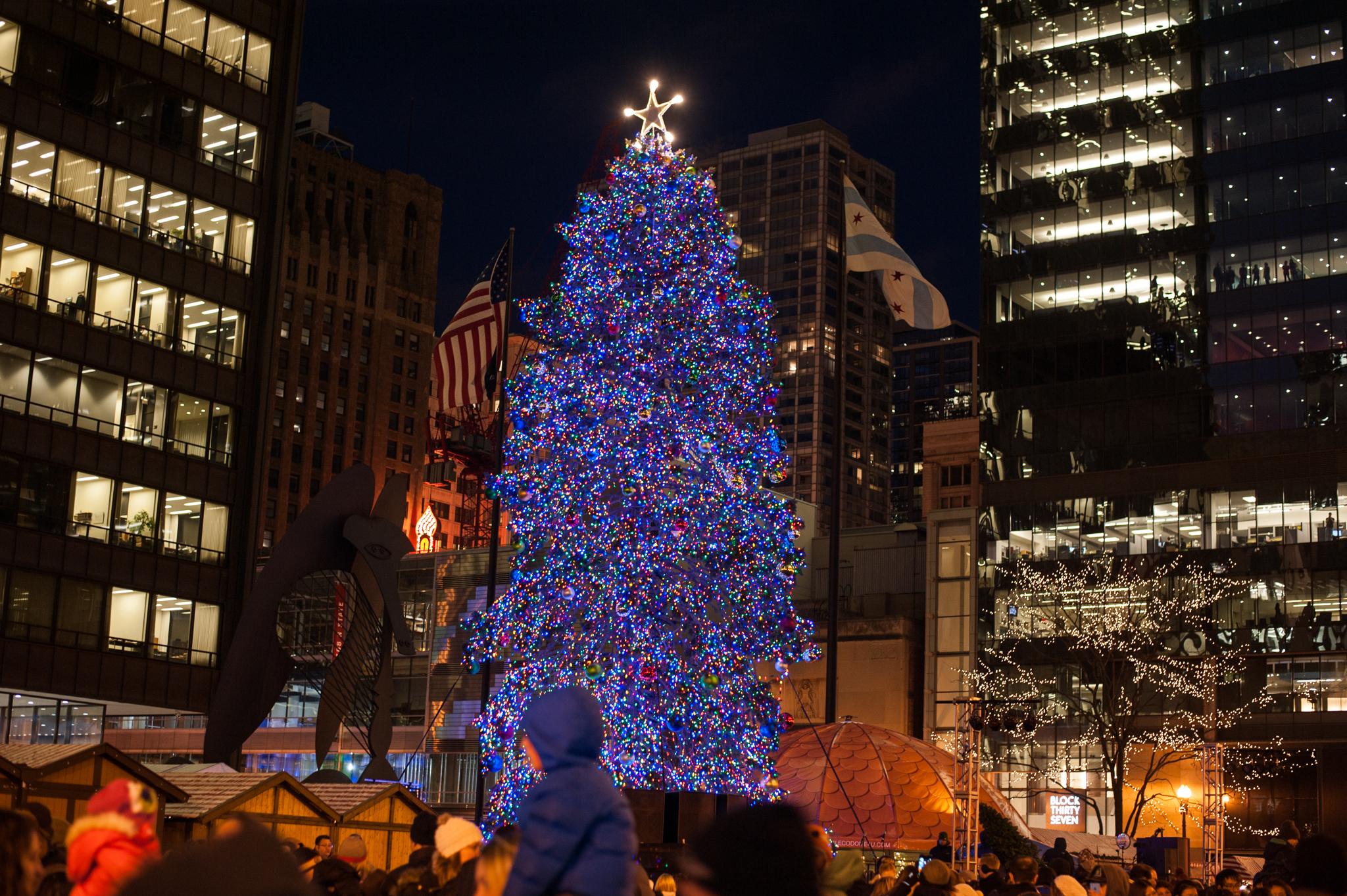 Chicago Tree Lighting