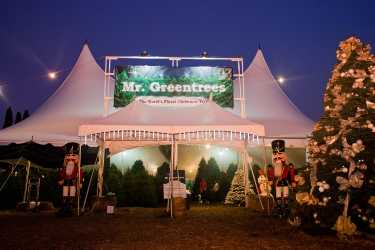 Christmas Trees For Sale In Los Angeles
