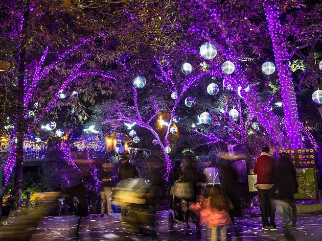 Houston Zoo Lights 5 Tickets