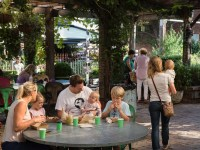 Things to Do with Kids & Family in Sydney | Time Out Sydney