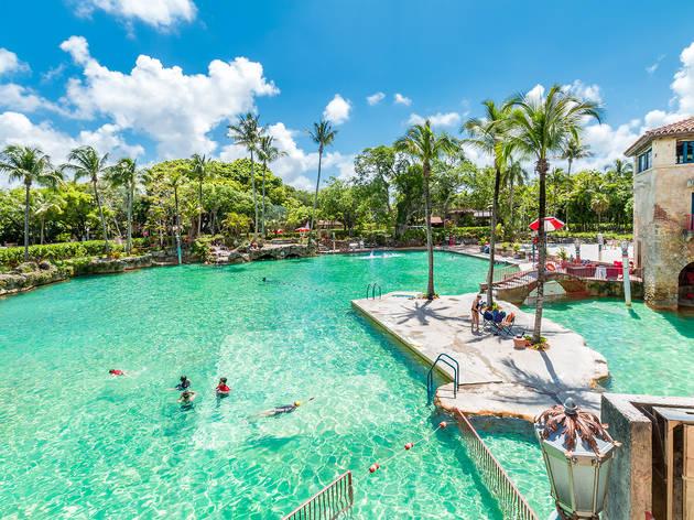 Venetian Pool  Miami FL  Things to do in Coral Gables Miami