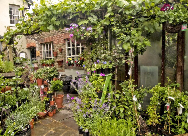 best garden centres and plant shops in london | 24 lush places to