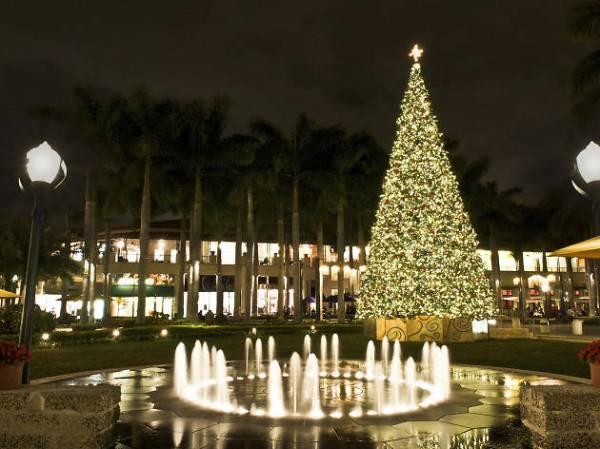 christmas lights miami # 0