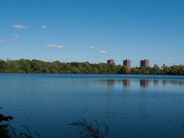Fresh Pond Golf Boston