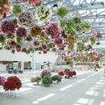 In Photos Tokyo S Newest Starbucks Is Set Inside A Blooming Greenhouse