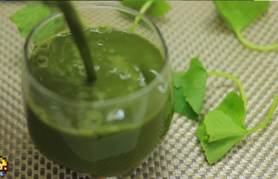 Cách làm nước đậu xanh rau má thanh mát uống cực đã trong ngày hè 10