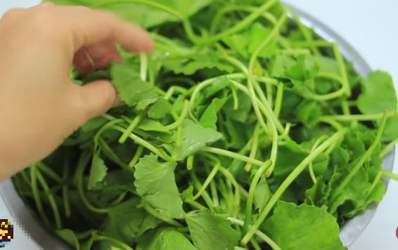 Cách làm nước đậu xanh rau má thanh mát uống cực đã trong ngày hè 2