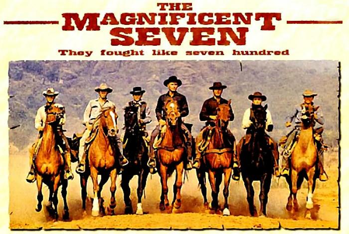 Magnificent Seven, team, teamwork, project, Toby Elwin, agile, scrum