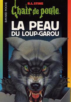 Top 10 Des Meilleurs Livres Chair De Poule Meme Si Avec