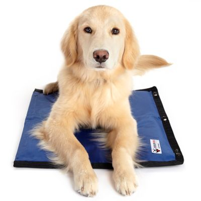 coolerdog hydro cooling mat 2 pack