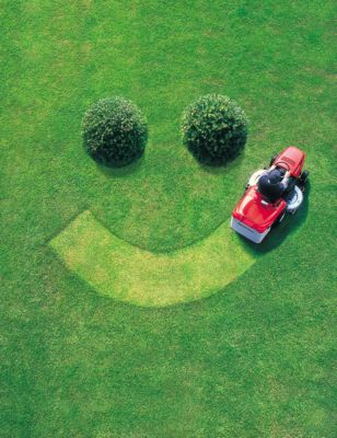 fun facts lawn care outdoor