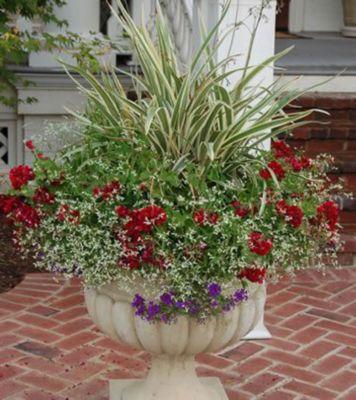 Container Flower Gardening Flowers Ideas