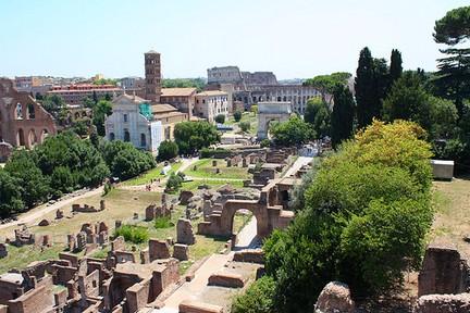 Colle Palatino Roma  14
