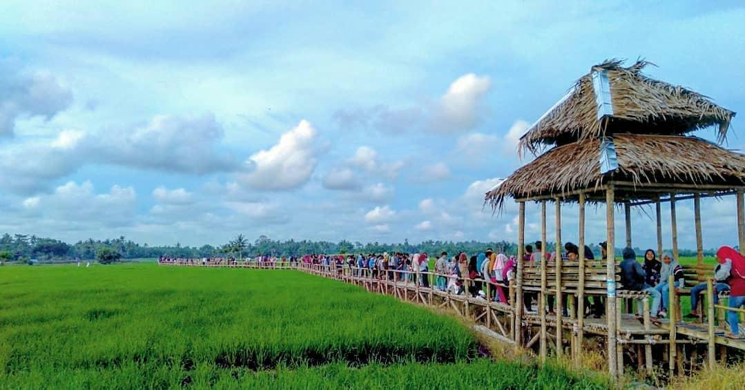 Hasil gambar untuk 1. Agrowisata Paloh Naga Deli Serdang.