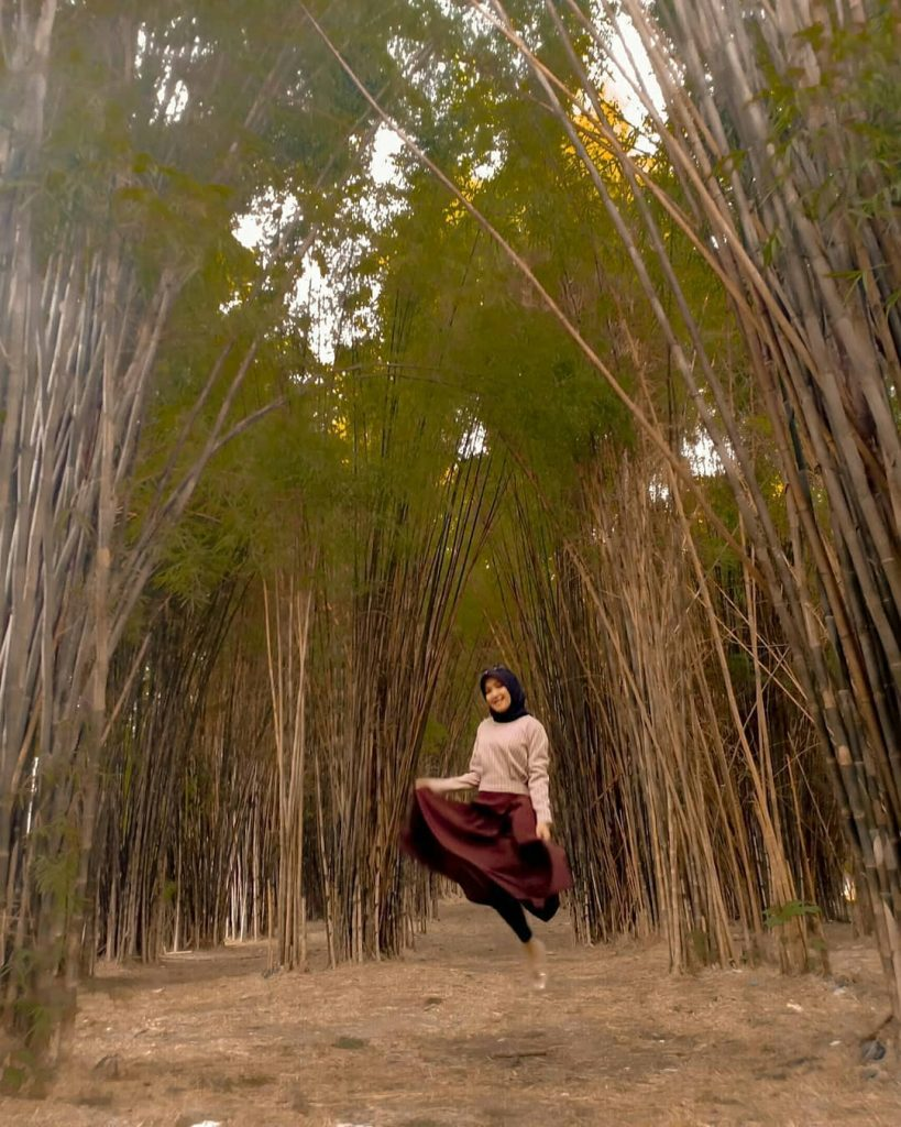 Hutan Bambu Surabaya : hutan, bambu, surabaya, Hutan, Bambu, Timur,, Instagenic