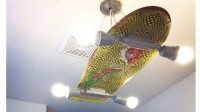 Skateboard Light Fixture | Trusper