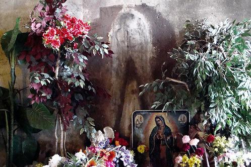 Virgin Mary matrix example
