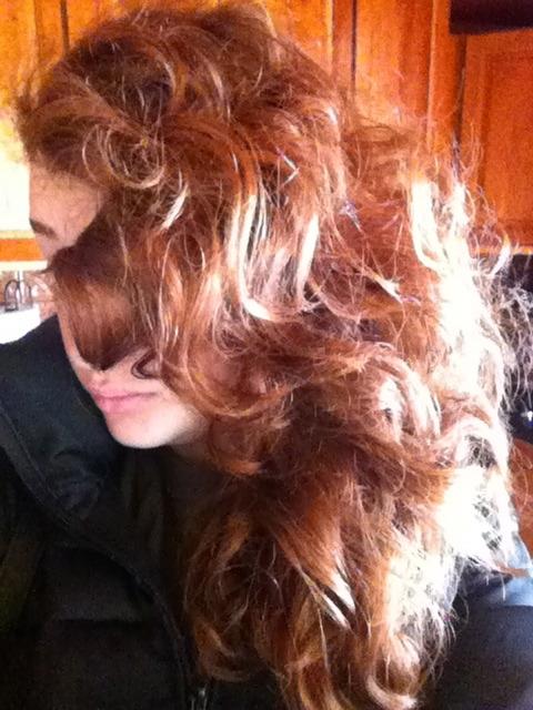 The Tumblr Beauty Blog LUSH Caca Rouge Henna Dye Before