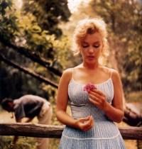 Hair On The Brain  Marilyn