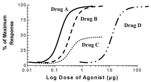 My Notes for USMLE — Pharmacodynamics: Remember!!!