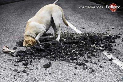 Innovative Ads ドッグフードの広告らしい。アメリカ人は犬にも強さを求めるのか。