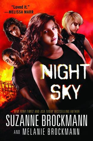 Night Sky by Suzanne Brockmann & Melanie Brockmann