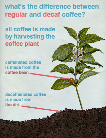 Where decaffeinated coffee comes from
