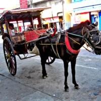 Going Loco over Ilocos: Laoag, Ilocos Norte