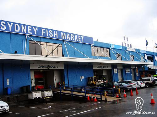 Seafood Wholesale San Francisco