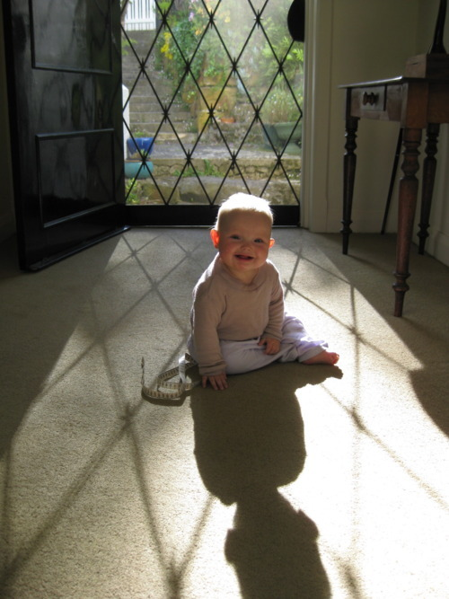 Shadow Poppet – The Poppy Files