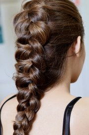 mane idea large dutch braid