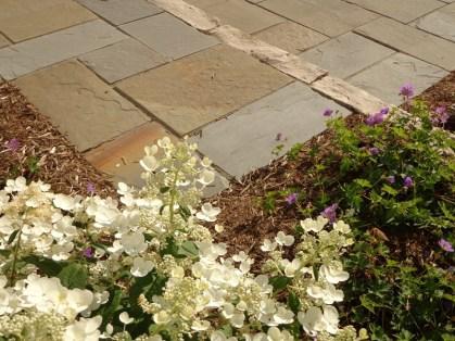 Bluestone patio with plantings