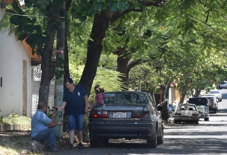 <p>El ingeniero forestal José Balbuena recomendó trasplantar árboles de mayor porte.</p>