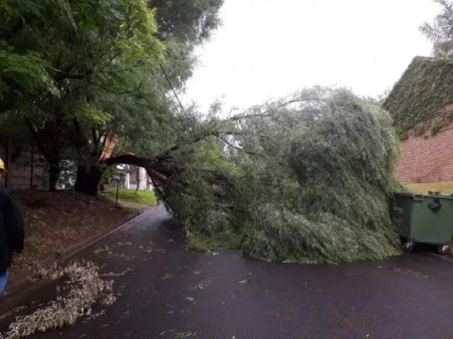El temporal en Paraná