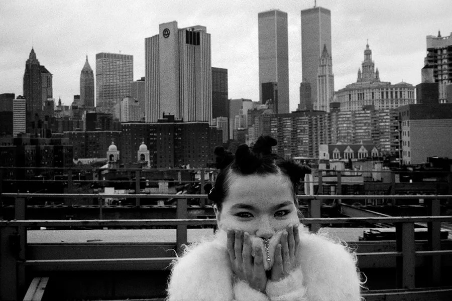 Image result for bjork big time sensuality