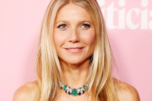 Gwyneth Paltrow Could Write the Book on Divorce at This Point   Vanity Fair