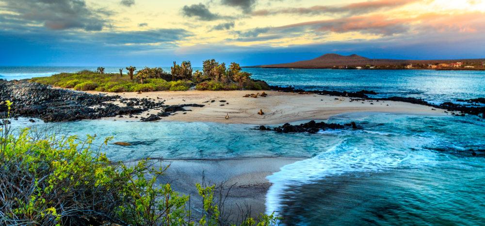 öar i Sydamerika, ö i Sydamerika, Galapagos, Galapagosöarna, Charles Darwin