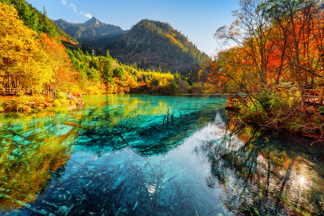 vackraste skogarna i världen, skogar i Kina, resa till Kina