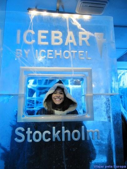 Escultura no gelo dentro do Icebar.