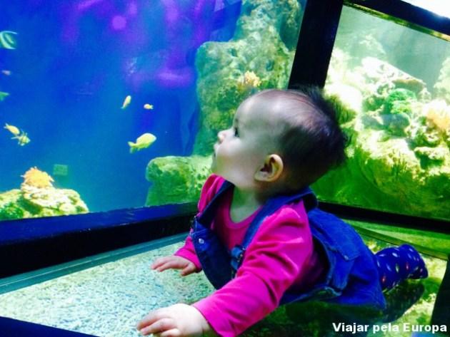 Minha sereinha amou o aquário!