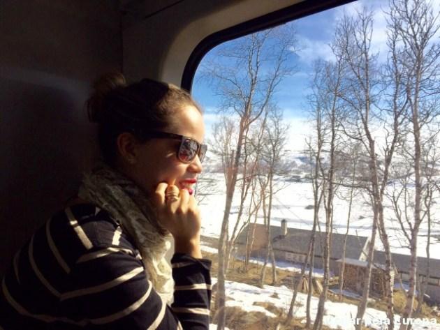 Encantada com as paisagens da viagem de trem entre Oslo e Bergen.